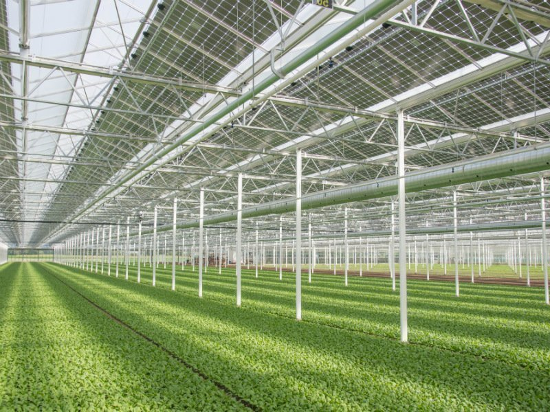 Solar greenhouse roof system on the inside
