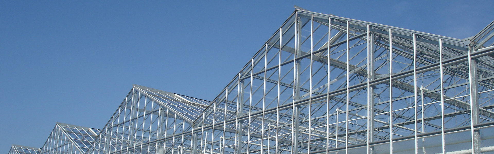 Widespan greenhouse roof system