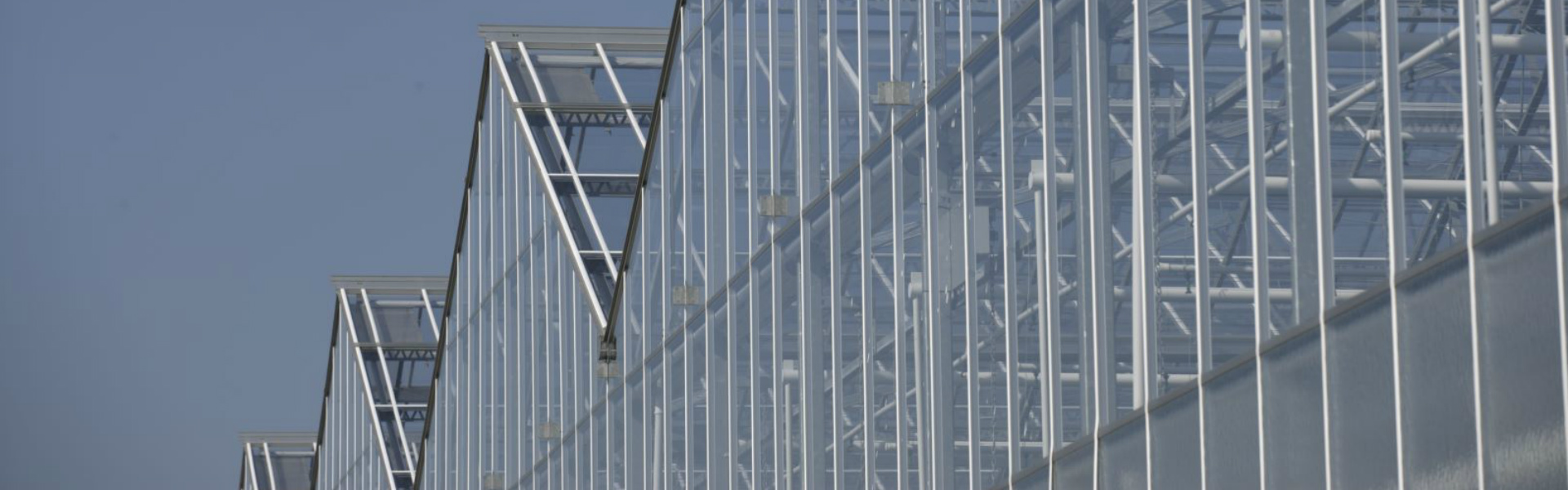 Widespan greenhouse gable system | Alcomij