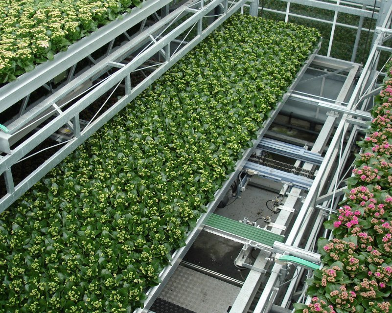 Logistic cultivation solutions